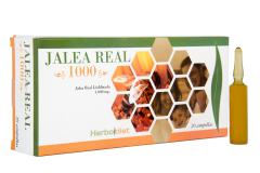 Jalea Real 1000, 20 ampollas